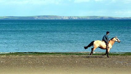 West Cork Horse Riding